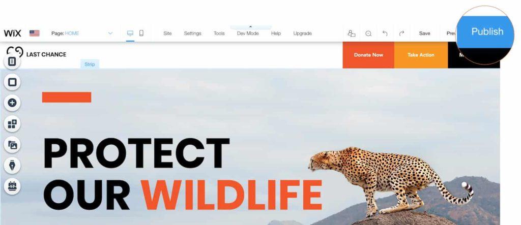 creare sito web attività principianti