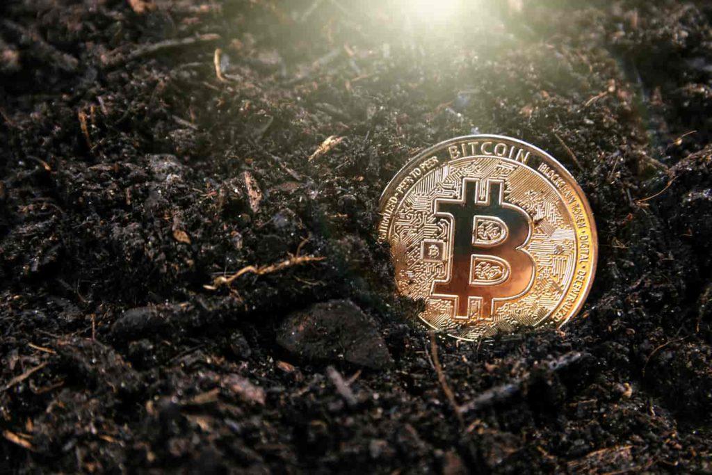Cronologia dei prezzi dei bitcoin